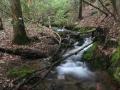 headwater stream, NC