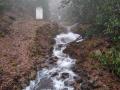 high flows at Coweeta