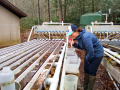 prepping the streamside channels for shredder growth experiments